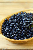 Bilberry, whortleberry — Stock Photo