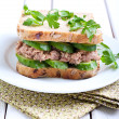 Tuna and cucumber sandwich — Stock Photo #48772945