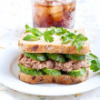 Tuna and cucumber sandwich — Stock Photo