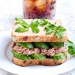 Tuna and cucumber sandwich — Stock Photo #48772961