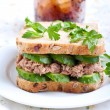 Tuna and cucumber sandwich on plate — Stock Photo