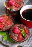 Torte al cioccolato lampone — Foto Stock