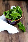 Fresh sorrel — Stock Photo