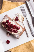 Chokladkaka med grädde ost, rå cherry på vit platta — Stockfoto