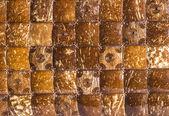 Natural texture — Stock Photo