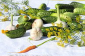 Ingredients for salting of cucumbers — Stock Photo