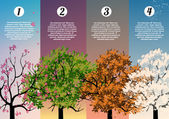 Four Seasons Banners with Abstract Trees Infographic - Vector Illustration — Stock Vector