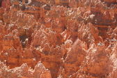 Bryce Canyon Gesteinsformationen — Stock Photo