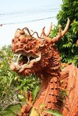 Drache terracota — Foto Stock