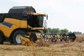 Combine harvester on wheat field — Stock Photo