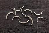 Nail clipper & nail clippings — Stock Photo