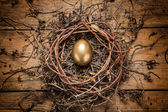 Golden egg in the nest — Stock Photo