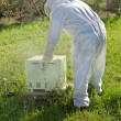 Beekeeper working in his apiary — Stock Photo #47170417