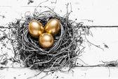 Golden eggs in nest — Stock Photo