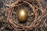 Golden egg in nest — Stock Photo