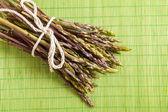 Wild asparagus — Stock Photo