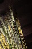 Wheat on wooden table — Stock Photo