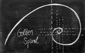 Fibonacci spiral — Stock Photo