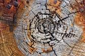 Rdza i drewna — Zdjęcie stockowe