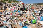 Pile of domestic garbage in landfill — Fotografia Stock