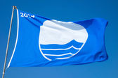 Blue flag — Stock Photo
