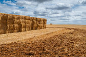 Straw bales over mown field — Stock Photo