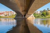 Under the bridge — Стоковое фото