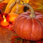 Autumn arrangement. — Stock Photo #49927215