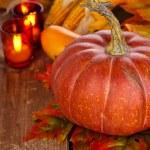 Autumn arrangement. — Stock Photo #49927441