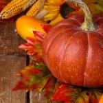 Autumn arrangement. — Stock Photo #49927711