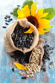 Sunflower and sunflower seed — Stock Photo