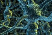 Neuron cells — Stock Photo