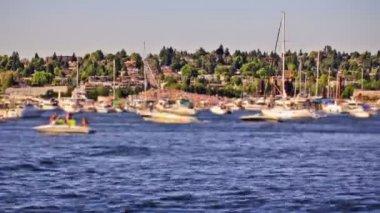 Boat traffic in Lake Union. — Stock Video