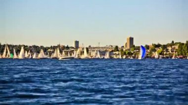 Boat traffic time lapse passing by in Lake Union — Stock Video