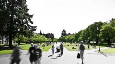Time lapse clip of campus pedestrian traffic — Vídeo de stock