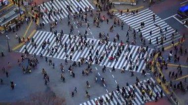 City pedestrian traffic of people — Стоковое видео