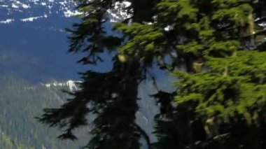 Ski lift ride clip passing trees with mountainside — Stock Video
