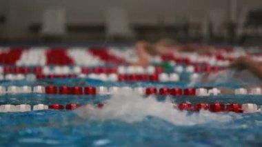 Shot of people swimming laps. — Stock Video