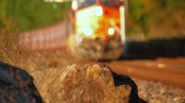 Freight train passing by — Stock Video