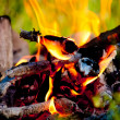 Heat of the fire — Stock Photo #47165603