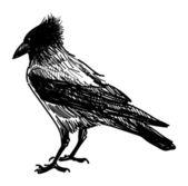 злой ворона — Cтоковый вектор