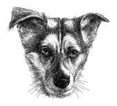 Head of sad dog — 图库矢量图片