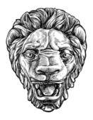Lion muzzle — Stock Vector