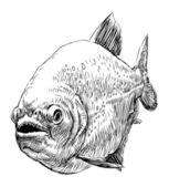 хищная рыба — Cтоковый вектор