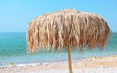 Sonnenschirm am strand — Stockfoto