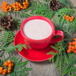 Christmas cup of cocoa, fir tree, pinecones and rowan — Stock Photo #51512393