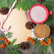 Christmas card with cup of cocoa, fir tree, pinecones and rowan — Stock Photo #51512543