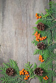 Christmas frame with fir tree, rowanberry and pinecones — Stock Photo