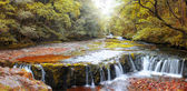 Forest waterfall, Wales, UK — Stock Photo