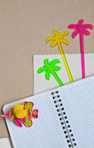 Exercise book with decorations — Stock Photo